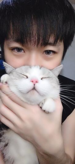 猫咪为何露出肚子睡觉?快来听听抖音主播东门魏官人的解答